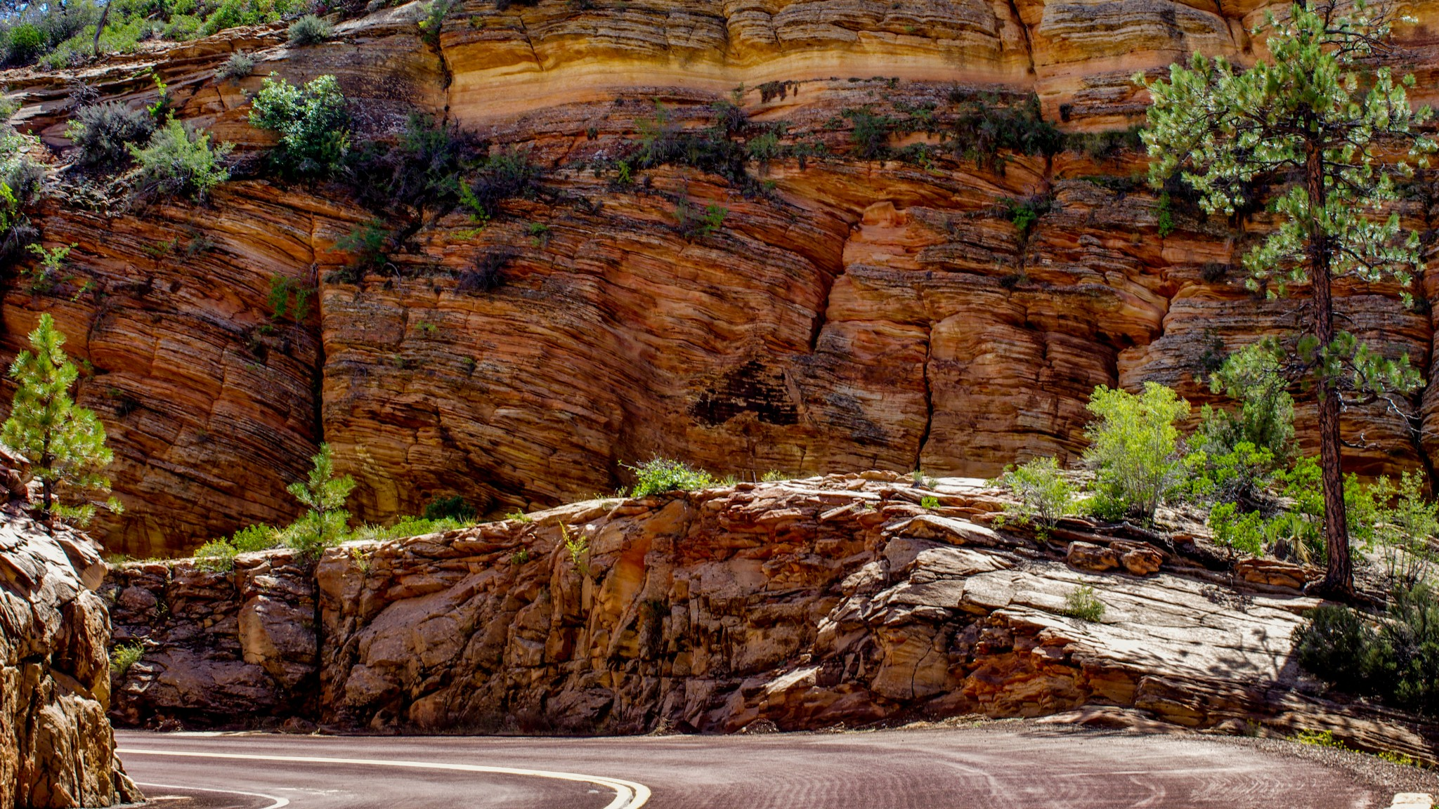 On Scenic Byway 9, Zion NP, UT
